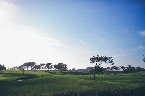 Torrey Pines wedding